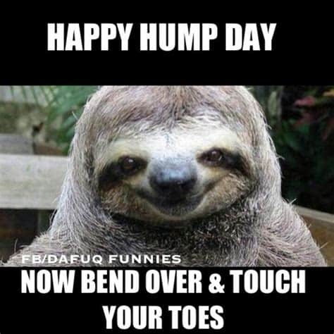 Hump Day Memes 1