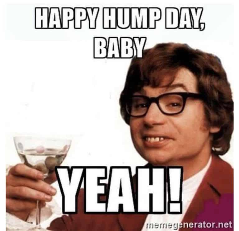 Hump Day Memes 10