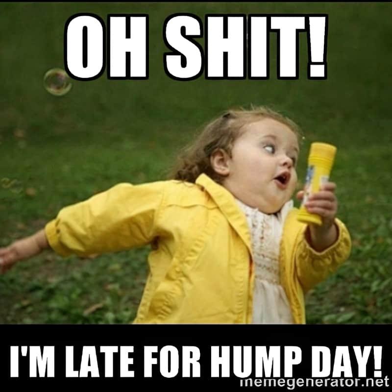 Hump Day Memes 12