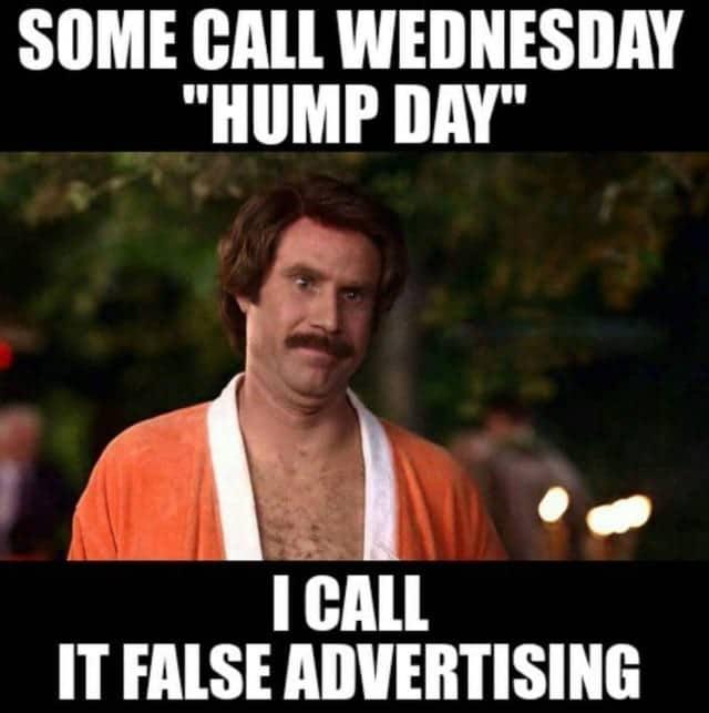 Hump Day Memes 8 1