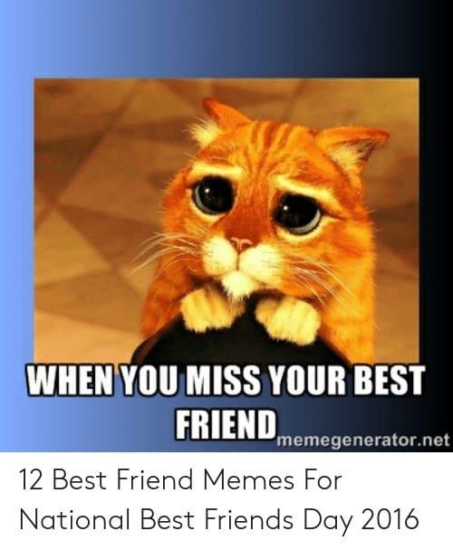 National Best Friends Day Meme 11 1