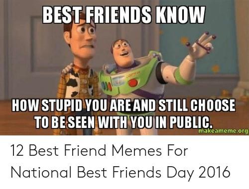 National Best Friends Day Meme 4 1