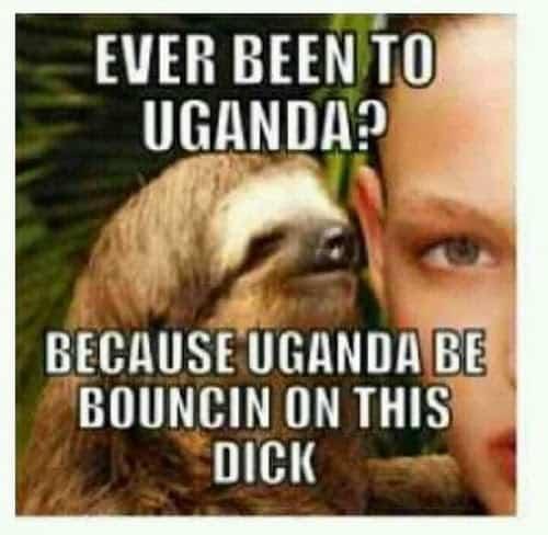 Sloth Memes 10