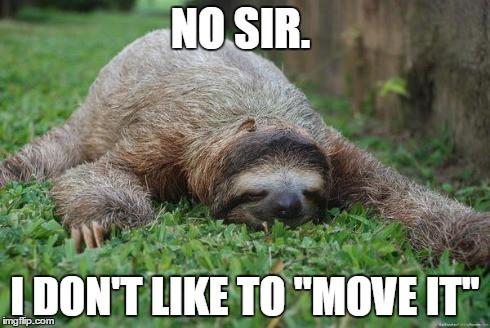 Sloth Memes 16