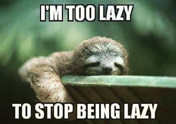 Sloth Memes 18