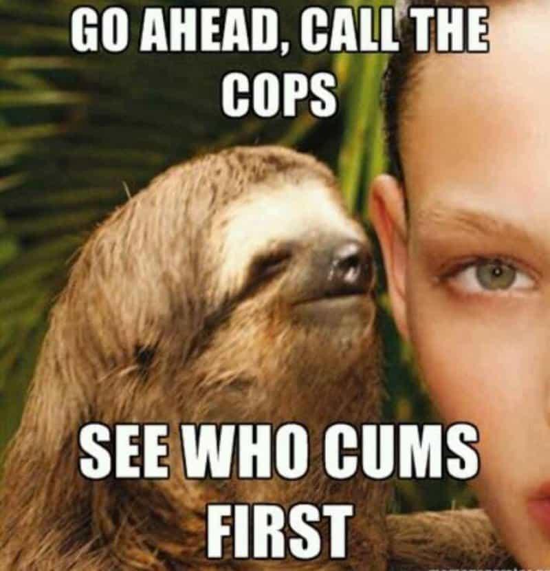 Sloth Memes 20