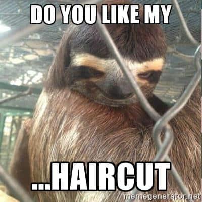 Sloth Memes 3