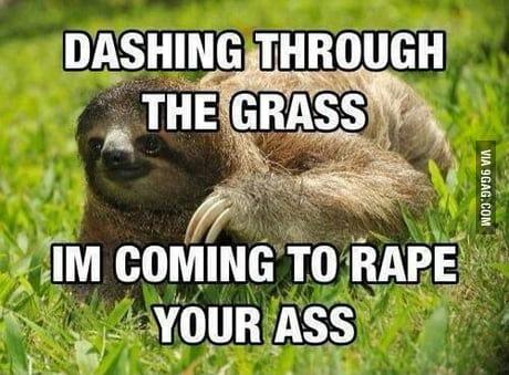 Sloth Memes 9