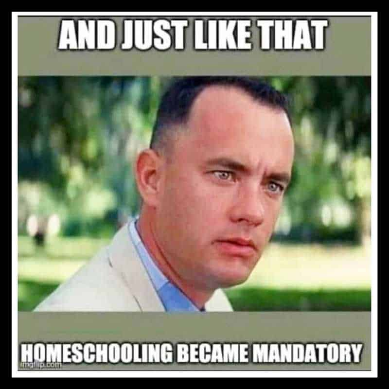 remote learning memes 6
