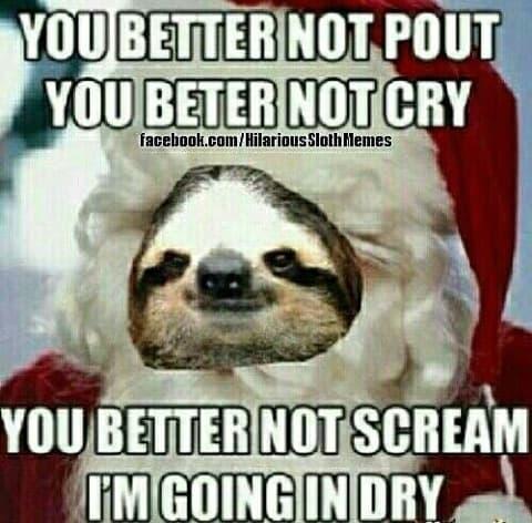 sloth memes 556faa6e15914