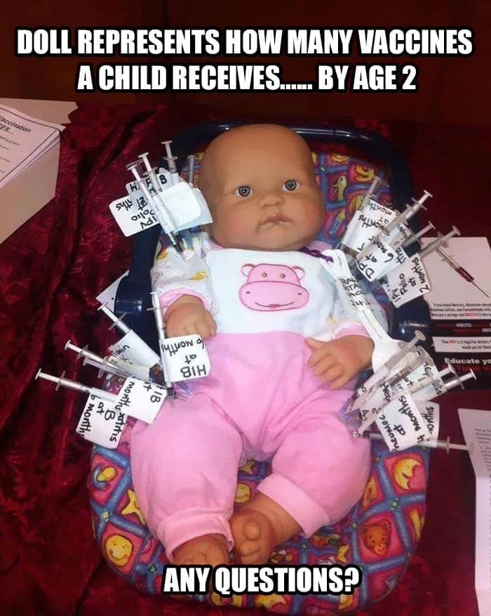 27 Old Lady Vaccine Meme 1