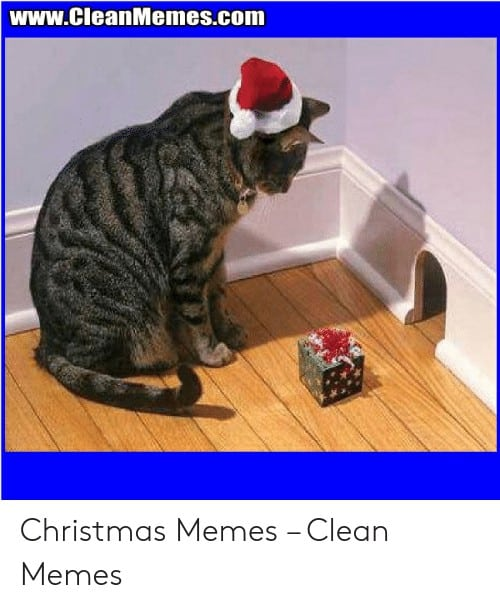 Christmass Memes Clean 8 1