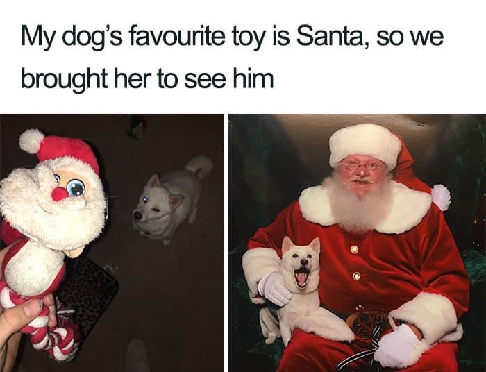 The Best 31 Funny Santa Memes in 2020 23