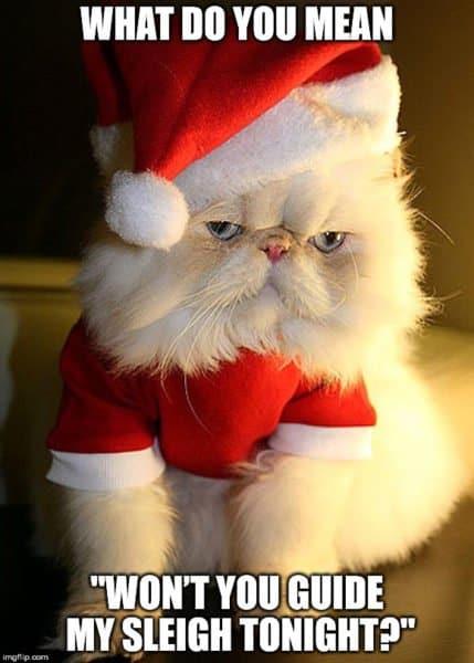 The Best 31 Funny Santa Memes in 2020 26