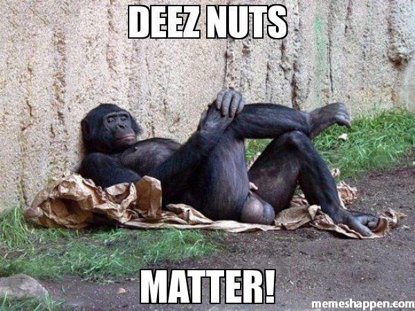 Deez Nuts Memes 2