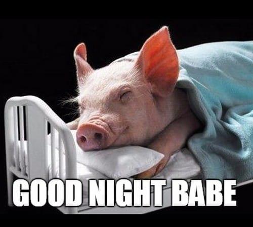 Goodnight Memes For Him 21