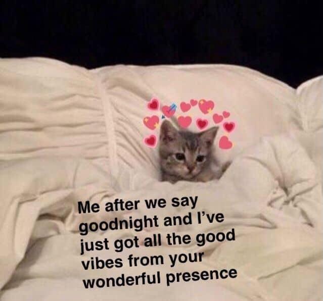 Goodnight Memes For Him 6