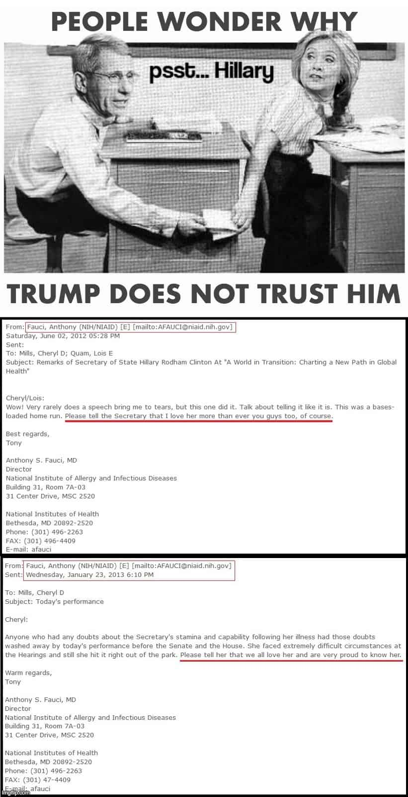 Hillary Fauci Meme 20