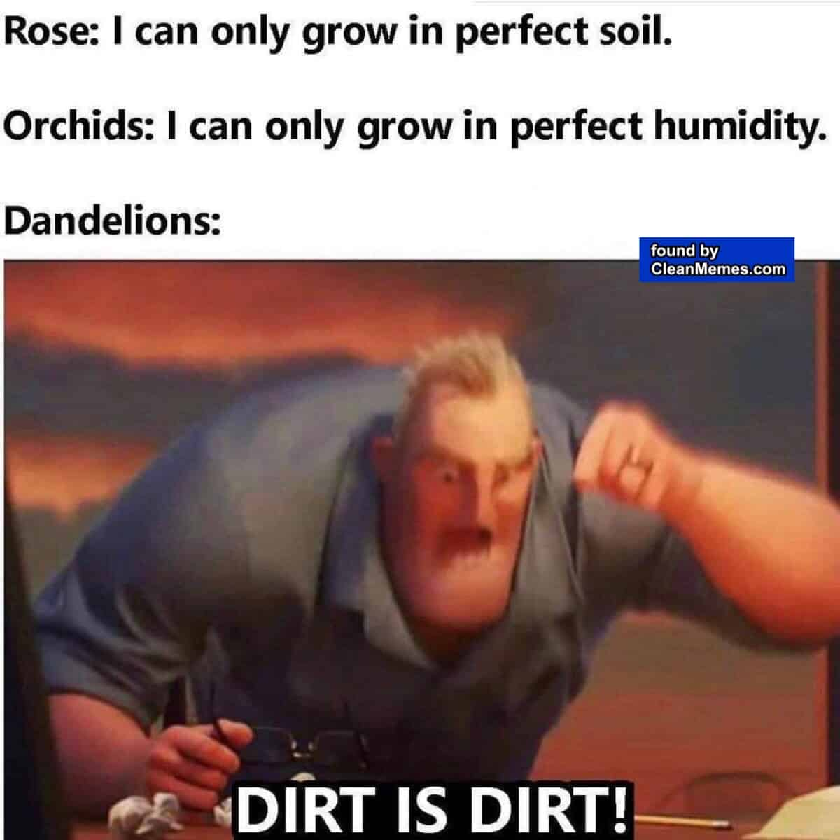 clean memes 8