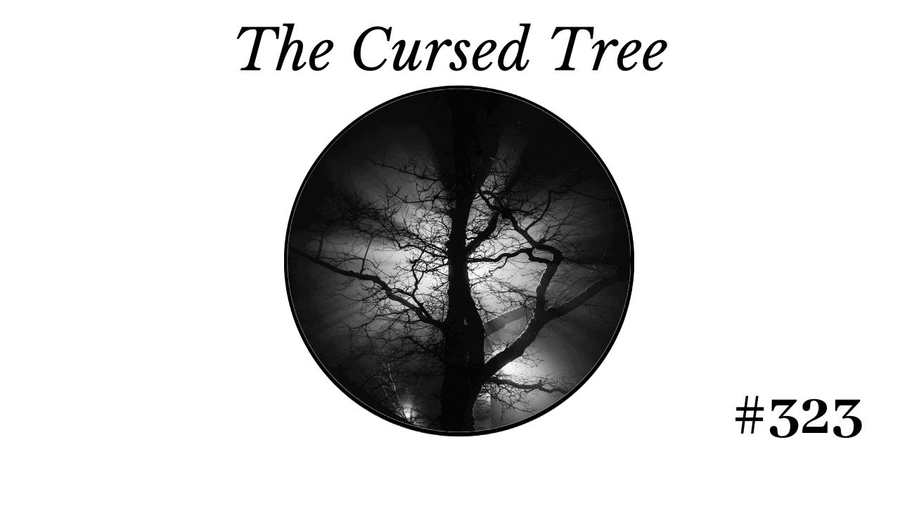 Cursed images 1