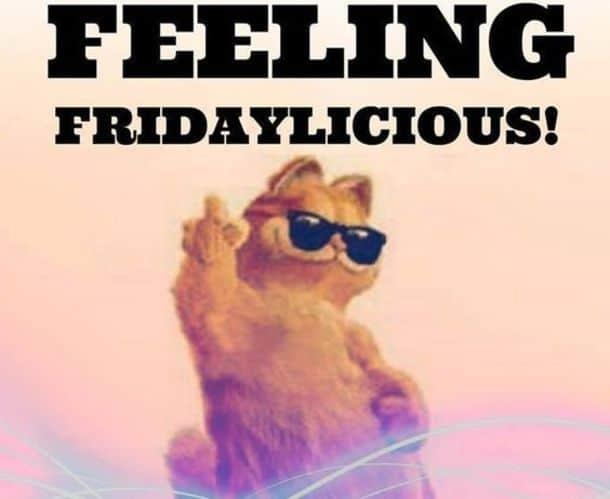 Friday Meme 10