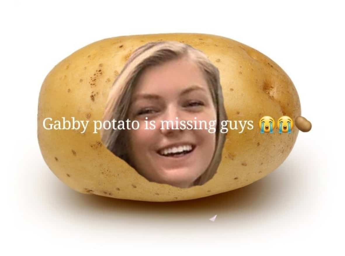 Gabby Petito Memes 3