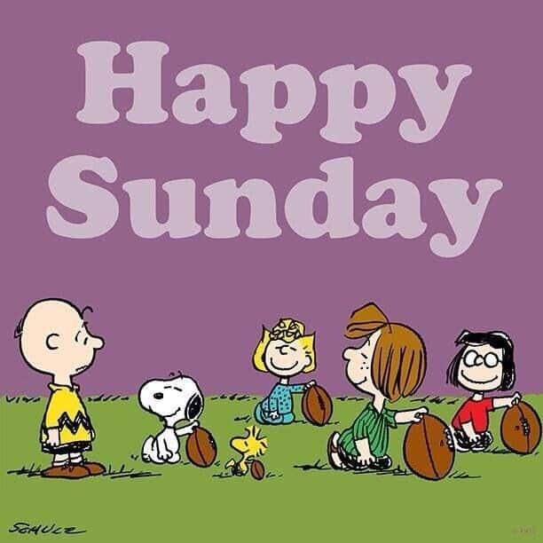 Happy Sunday memes 6