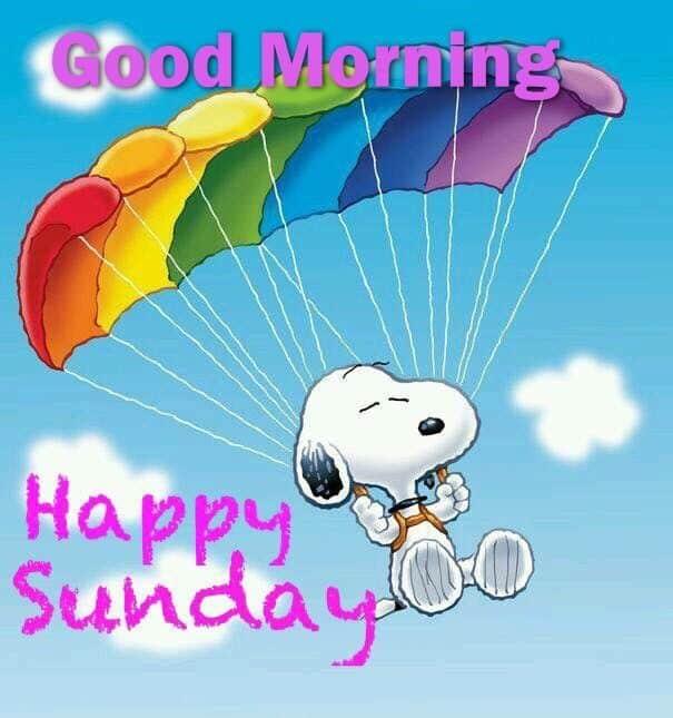 Happy Sunday memes 8