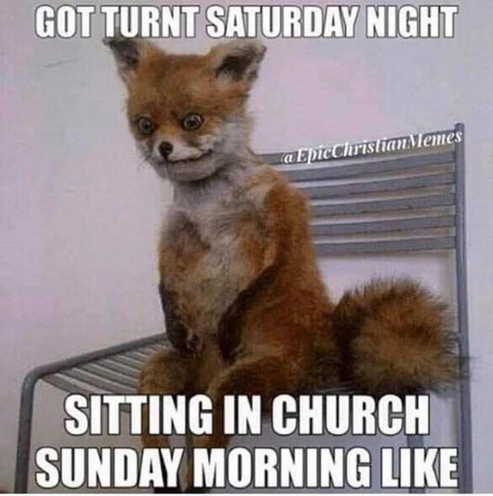Sunday morning memes 10