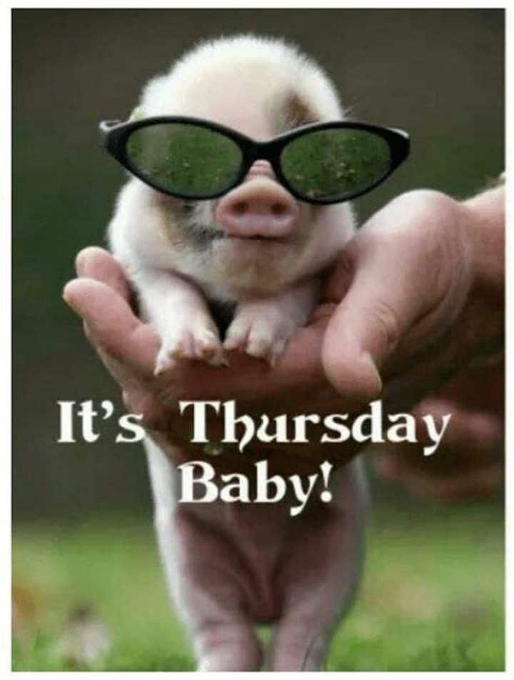 Thursday Memes 2
