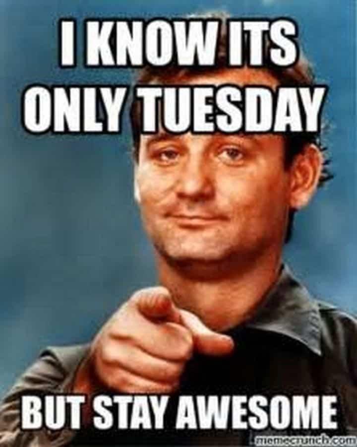 Tuesday Memes 13
