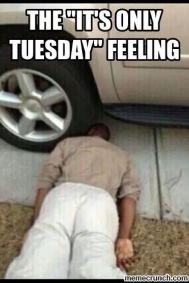 Tuesday Memes 16