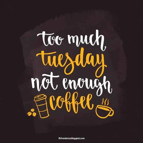 Tuesday Memes 20
