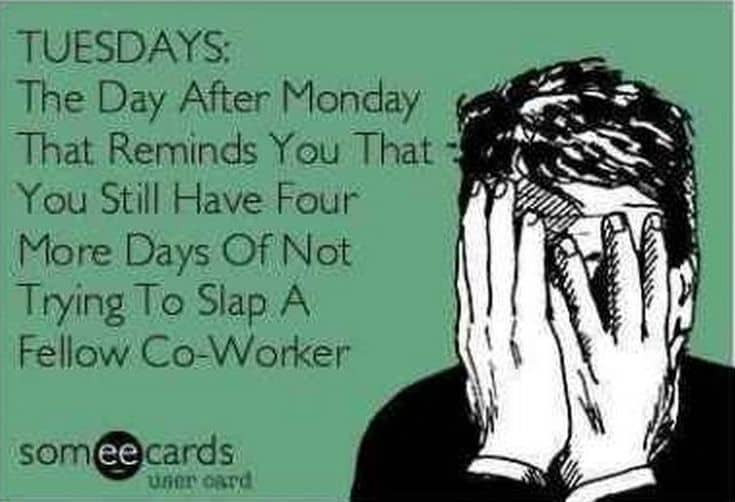 Tuesday Memes 21