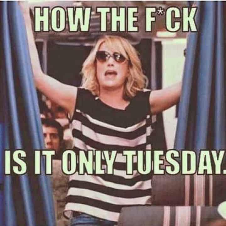 Tuesday Memes 22
