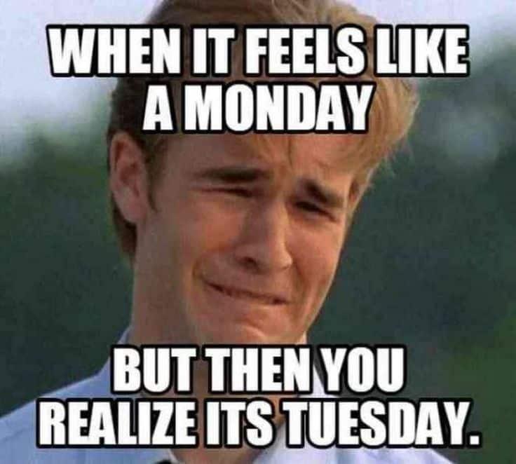 Tuesday Memes 25