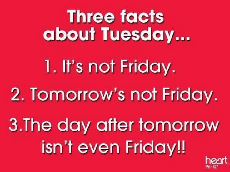 Tuesday Memes 30