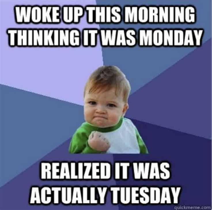 Tuesday Memes 33