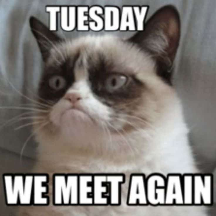 Tuesday Memes 8