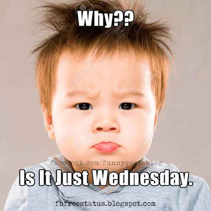 Wednesday Memes 8