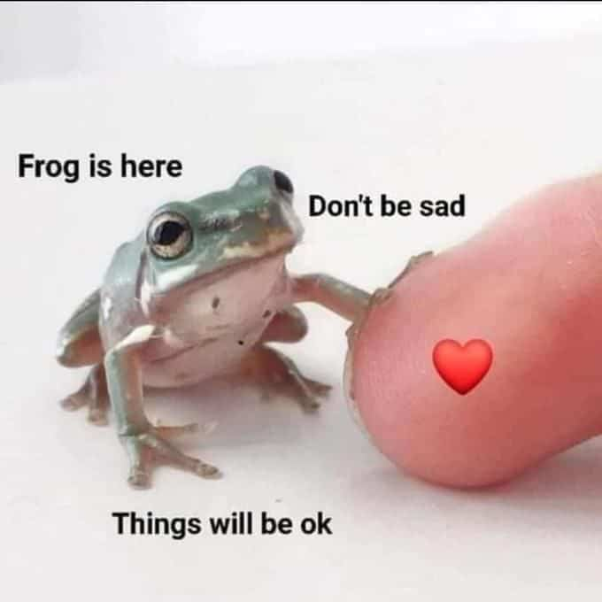 Wholesome Memes 4