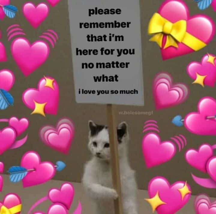 Wholesome heart memes 2