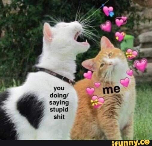 Wholesome love memes 8