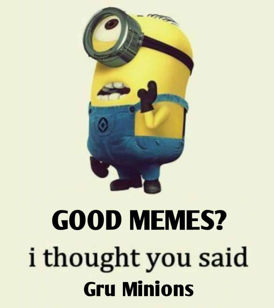 Minion Memes 3